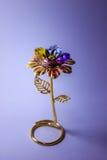 Golden flower Stock Photos