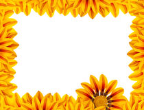 Golden Flower Frame Royalty Free Stock Images