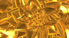 Golden Flower Opening. Loopable.