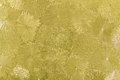 Golden flower pattern wall. Stock Image