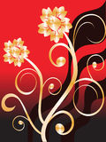 Golden flowers. Vector illustration of golden flowers on a red and black background Royalty Free Stock Images