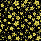 Golden flowers on a black background Royalty Free Stock Images