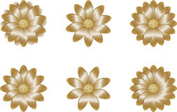 Golden flowers Royalty Free Stock Images