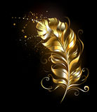 Golden fluffy feather Royalty Free Stock Photo