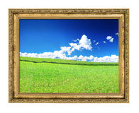 Golden frame and blissful filed view Royalty Free Stock Photos