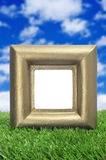 Golden frame on the grass Stock Images
