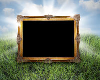 Golden frame in grass. A gilded golden frame in tall grass with light coming from behind.  Solid black matt for easy removal Royalty Free Stock Images