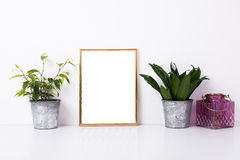 Golden frame mock-up on white wall. Background, home decor with plants and objects royalty free stock images
