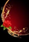Golden frame wth rose Stock Photos