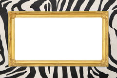 Golden frame  with zebra texture background Stock Photos