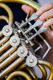 Golden french horn Stock Photos