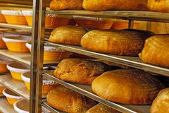 Golden fresh baked bread in bakery Stock Image