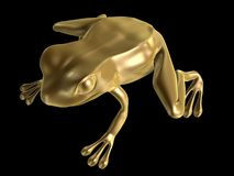Golden frog Stock Photography