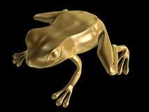 Golden frog. Sitting isolated on black background Stock Photography