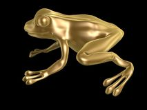Golden frog. Sitting isolated on black background Stock Image