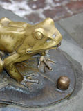 Golden Frog. Bronze sculpture, golden frog, fountain in an old town Stock Images