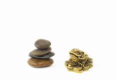 Golden frog and stones Royalty Free Stock Photography