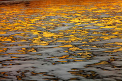 Golden frozen lake Stock Photo