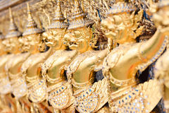 Golden garuda sculpture. Decorates on wall Stock Photos