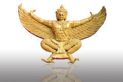 Golden garuda statue. White background Stock Photography