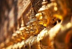 Golden garuga Stock Image