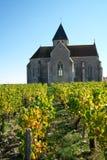 Golden Gate av Bourgogne, by av Chablis i den Bourgogne regionen som är berömd för vitt vin royaltyfri fotografi