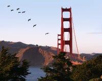Golden Gate bridge. San Francisco, California Stock Photography