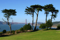Golden Gate Bridge. View from the Presidio Golf Course Royalty Free Stock Image