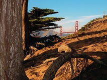 Golden gate bridge in California del Nord Immagine Stock Libera da Diritti