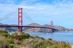 Golden Gate Bridge in Clear Blue Sky with Nature in the Foreground. View of the Golden Gate Bridge with grass and vegetation in the foreground and the Marin royalty free stock image