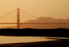 Golden Gate Bridge Closeup. The Golden Gate bridge of San Francisco is visible through golden misty haze Royalty Free Stock Image