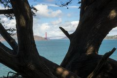 Golden Gate Bridge in Lands End, San Francisco. The view in spring in Lands End, San Francisco, CA, U.S royalty free stock photo