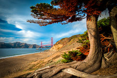 Golden Gate Bridge. Over a bay, San Francisco Bay, San Francisco, California, USA Stock Image