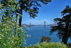 Golden gate bridge in san francisco, california usa royalty free stock photography