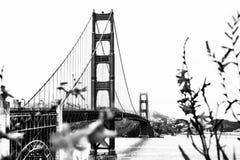 Golden gate bridge, San Francisco, U.S.A. Fotografie Stock Libere da Diritti