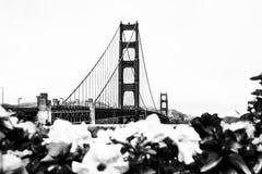 Golden Gate bridge,San Francisco,USA in black and white Stock Photos