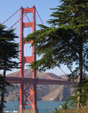 Golden Gate Bridge Between Trees Royalty Free Stock Photo
