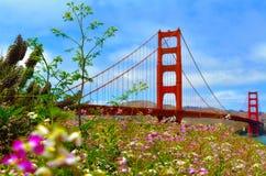 Golden Gate Bridge w San Fransisco, CA - Obraz Royalty Free