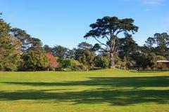 Golden Gate Park fotografía de archivo libre de regalías