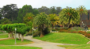Golden Gate Park. In San Francisco, California United States Royalty Free Stock Photo