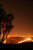 Golden Gate Bridge at night. Golden gate bridge illuminated at night with tree silhouetted in the foreground Royalty Free Stock Images