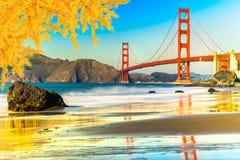 Golden Gate, San Francisco, California, USA. Royalty Free Stock Photo