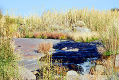 Golden Gatenationalpark, Sydafrika Royaltyfria Bilder
