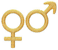 Golden gender symbols incrusted with gems Stock Photo