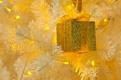 Golden gilf box. Gold gilf box on the white christmas tree Royalty Free Stock Photo
