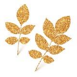 Golden glitter leaves isolated on white background Stock Photos