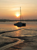 Golden Glow. Catamaran moored at low tide, partially silhouetted in the setting sun royalty free stock photo