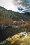 Golden Glow on the Beaver Dam Stock Photo
