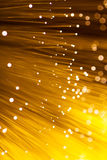 Golden glowing fibre optic. In gold color Stock Photography