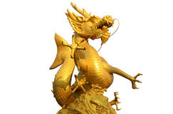 Golden gragon statue on white background Stock Image